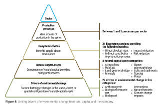 Linking drivers of environmental change to natural capital and the economy