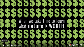 'Big question: What is nature worth?' video thumbnail