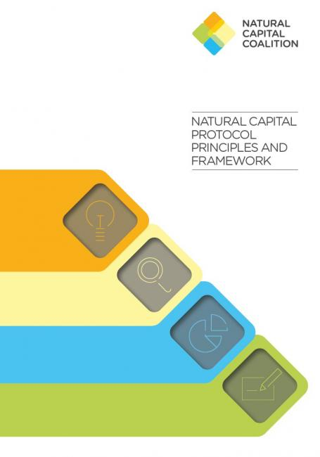 The Natural Capital Protocol Principles and Framework